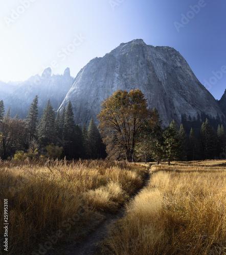 Photo  Morning sun illuminates colorful autumn foliage in Yosemite Valley, Yosemite Nat