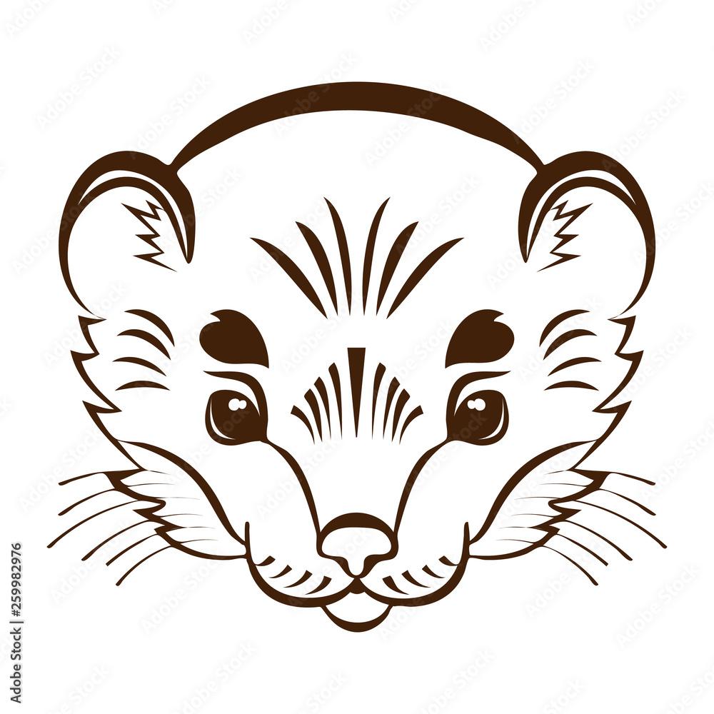 Fotografie, Obraz Logo ermine head. Stylized mascot.