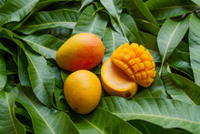 Ripe Yellow Mango Fruit On Gre...
