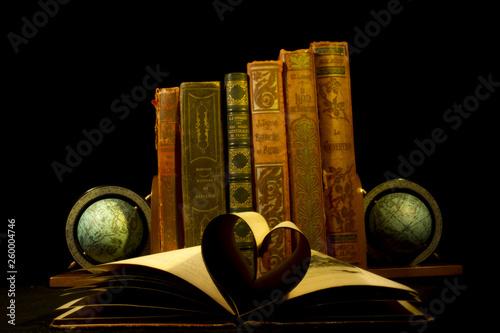 Obraz na plátně  Vieux livres