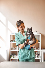 Are You Scared? Pleasant Young Female Vet Holding A Big Black Cat And Smiling While Looking At Him While Standing At The Veterinary Clinic