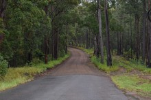 Closeup Of A Secluded Wet Sealed And Unsealed Rural Road