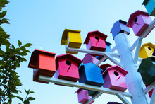 Cute Colored Birdhouses