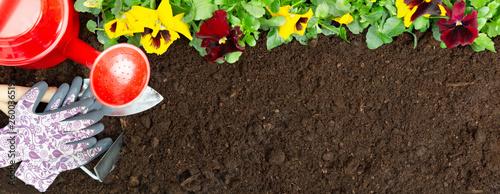 Papiers peints Pansies Gardening tools on soil background. Planting spring pansy flower in garden. Spring garden work concept