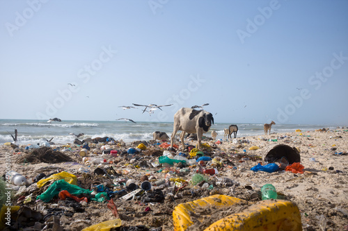 Fotografía Coastal pollution in Senegal