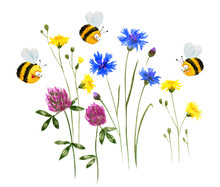 Funny Bees And Wild Flowers. Hand Drawn Watercolor