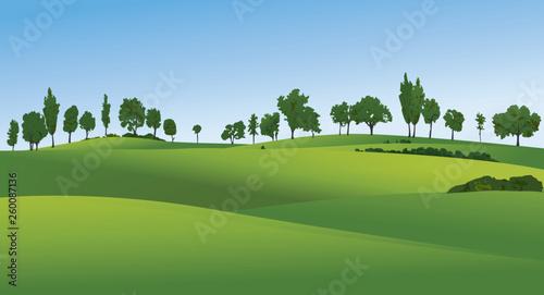Rural landscape with green fields Fototapeta
