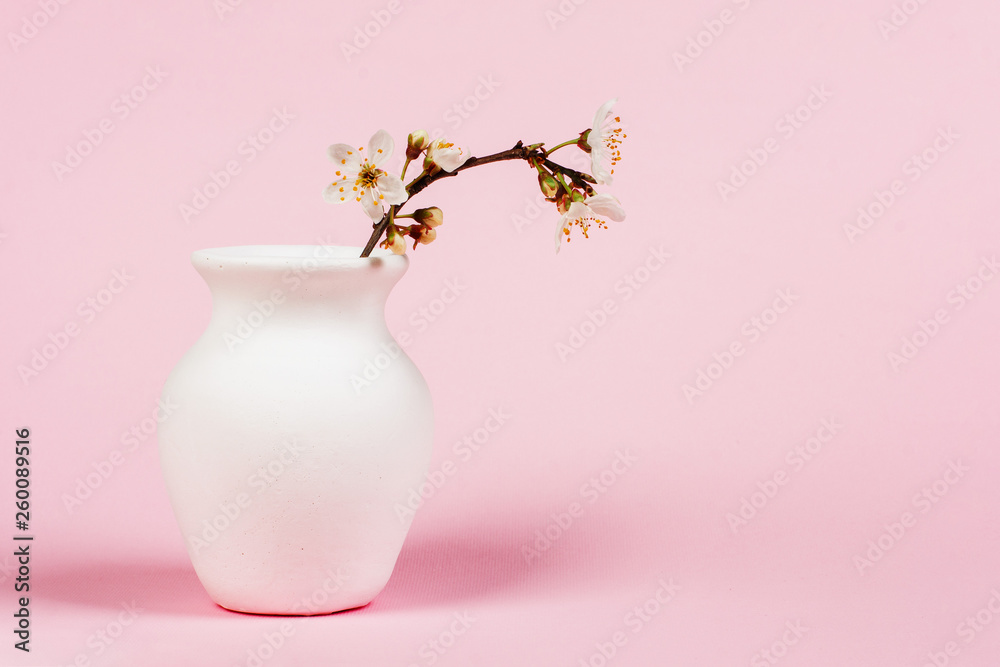 Fototapety, obrazy: blooming twig in white jug on pink background close up with copy space