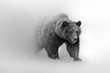 canvas print picture - Grizzly bear  beautifull nature wildlife animal collection