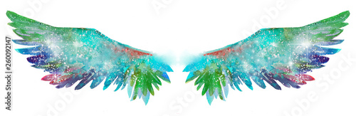 Poster Butterflies in Grunge Beautiful magic watercolor wings, symbol of freedom