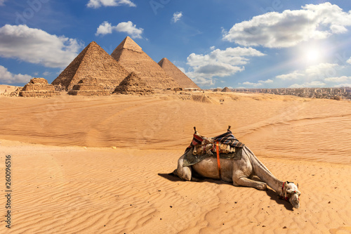 Recess Fitting Beige The Pyramids of Giza and a camel in the desert, Egypt