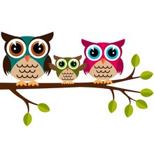 Owl Family On A Branch
