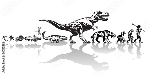 Fototapeta History of life on Earth. Timeline of evolution from prehistoric animals, dinosaur, saber toothed tiger, monkey to cave man. Hand drawn vector sketch on white background. obraz