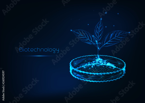 Fotografía  Biotechnology concept futuristic with glowing low polygonal sprout with soil in petri dish