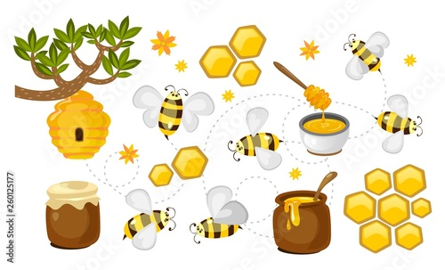 Foto Honey and bee vector collection