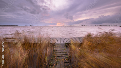 Pier with waving reeds