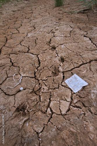 Fotografie, Obraz  dry soil
