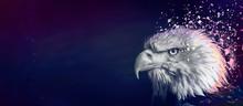 Eagle Painting Background, Violet