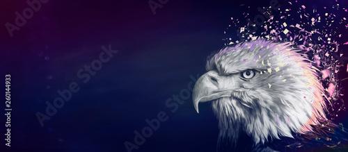 Photo  Eagle painting background, violet