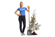 Woman Volunteer Standing With A Shovel Next To A Young Tree