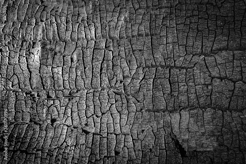Photo sur Aluminium Texture de bois de chauffage Burned wood texture. close up black scratched wooden background. Details on the surface of charcoal