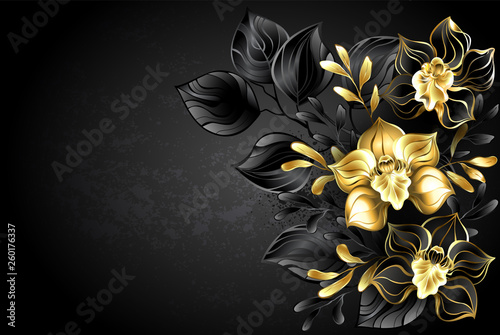 Black background with black orchid Canvas Print