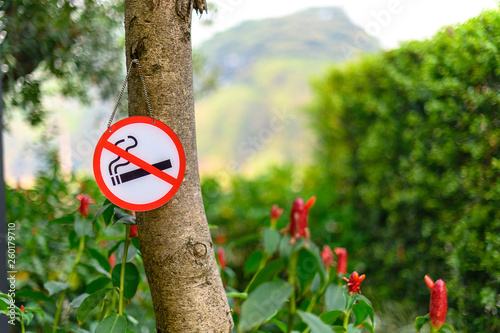 No smoking sign with place Don't smoking sign park Wallpaper Mural
