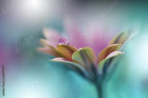 Beautiful Macro Shot Of Magic Flowers Border Art Design