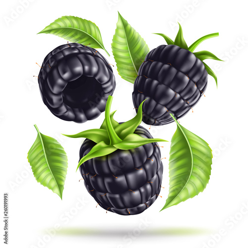 Vector realistic blackberry juicy fruit in motion Fototapeta