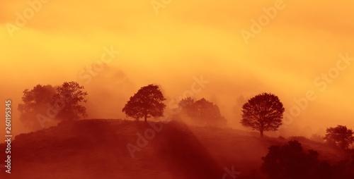 Entre nieblas al amanecer Fototapete