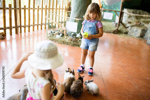 Cuadros en Lienzo  Adorable little girls playing with rabbit at the petting zoo