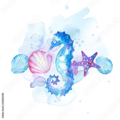 Valokuva  hand drawn watercolor composition of marine life