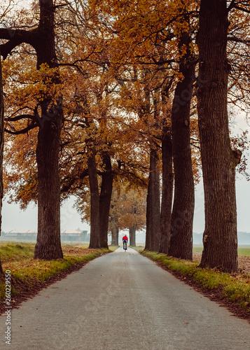 Fototapety, obrazy: Cycler