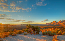 Red Rock Canyon,Nevada