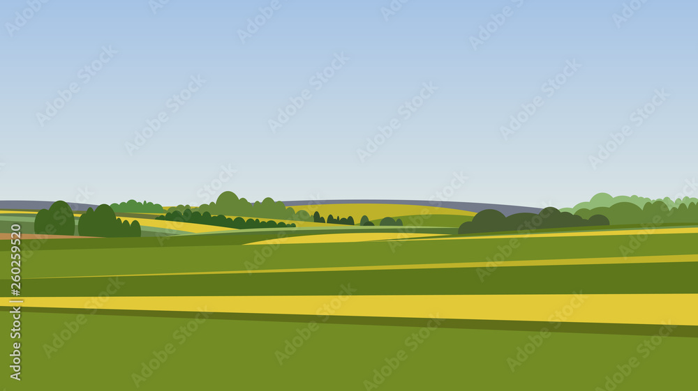 Fototapeta Green landscape with yellow fields. Lovely rural nature. Unlimited space. Vector illustration.