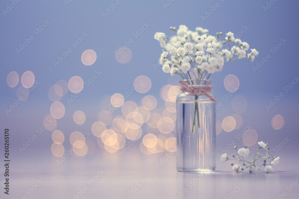 Fototapety, obrazy: Small bouquet of gypsophila in vase on the blue background