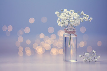 Small bouquet of gypsophila in vase on the blue background