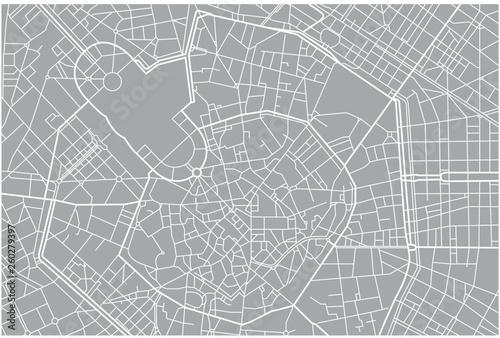 Fotografie, Obraz  Milano vector grey map