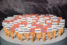 Representación De Los Pueblos Kavaen Y Sami
