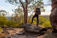 Female Bushwalker With Backpack Walking In Australian Bushland