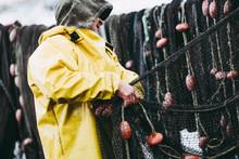 Pêcheur En Train De Ranger Ses Filets De Pêche