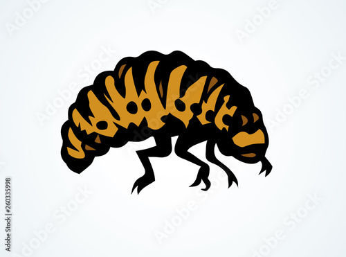 Fototapeta Beetle. Larva. Vector drawing