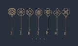 Fototapeta Dinusie - Modern graphic key collection gray