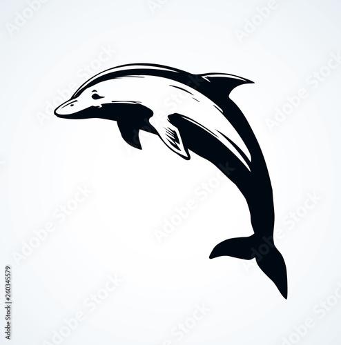 Foto op Plexiglas Dolfijnen Dolphin. Vector drawing