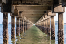 Sea View Under The Pier At Low Tide
