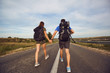 Travelers with backpacks go on the road in nature