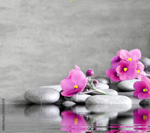 Photo Stands Zen Blue flower and stone zen spa on grey background