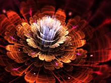 Red And Orange Fractal Flower, Digital Artwork For Creative Graphic Design