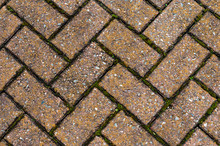 Chevron Pattern Of Brick Pavers With Moss Growing Between The Cracks.