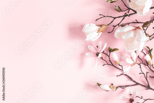 Tuinposter Magnolia Flowers composition. Magnolia flowers on pastel pink background. Flat lay, top view, copy space